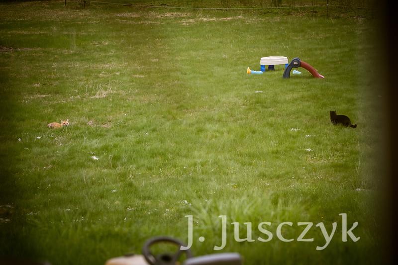 Jusczyk2021-6195.jpg