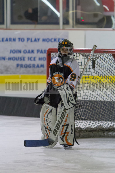 12/15/12 Mites Vs. Santa Rosa Jr. Flyers