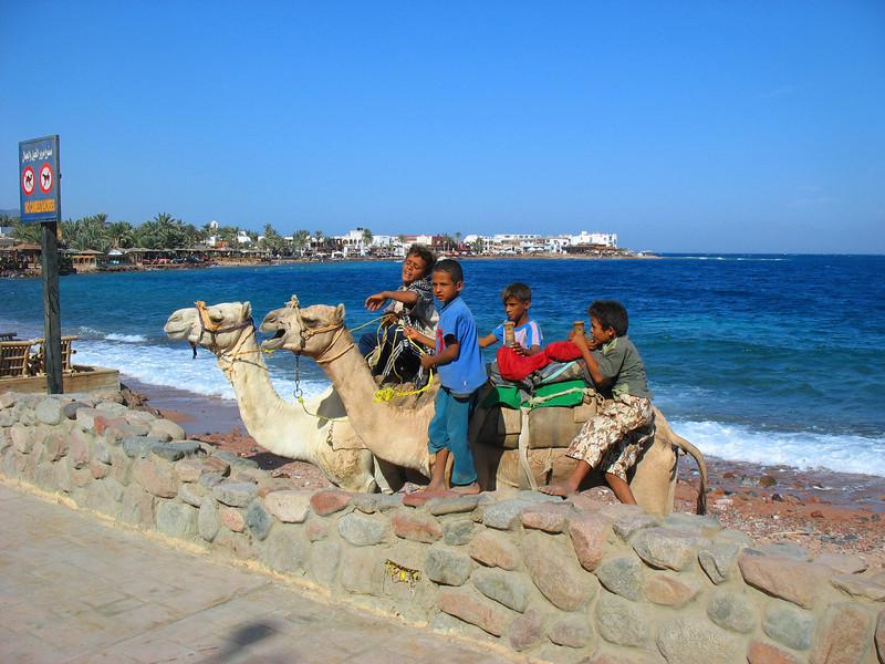 Egypt-600.jpg
