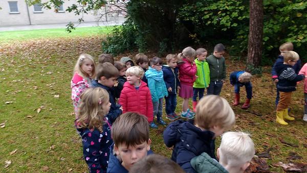 Kabouters en Pluk Herfst in schoolbos