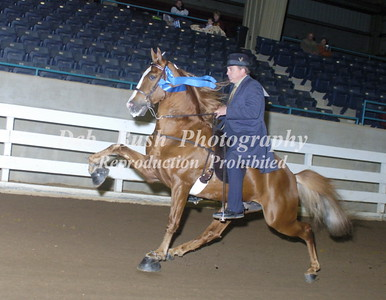 CLASS 20  SHOW PLEASURE OPEN SPECIALTY