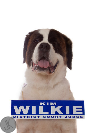 Kim Wilkie for District Judge