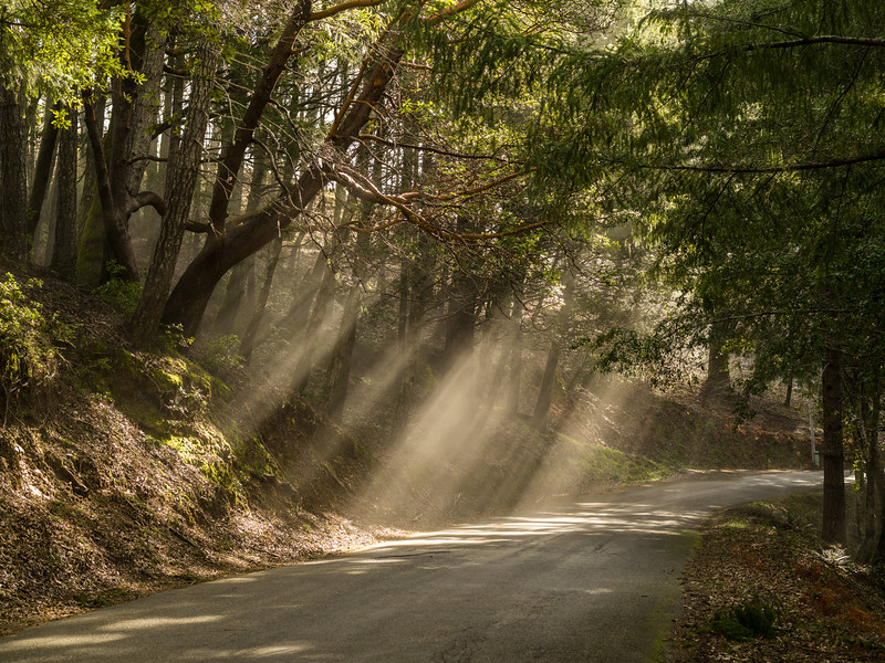 Mist and Road, King Range