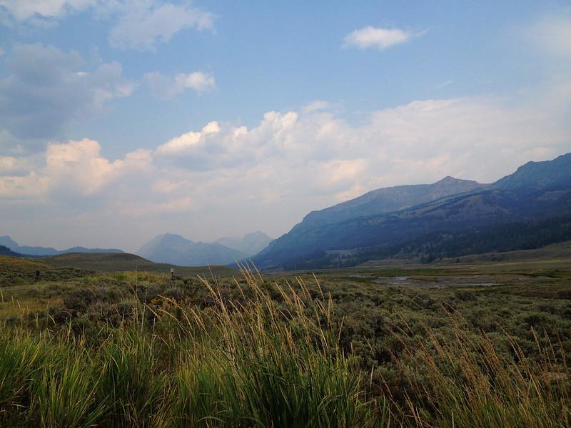 yellowstone landscape.jpg