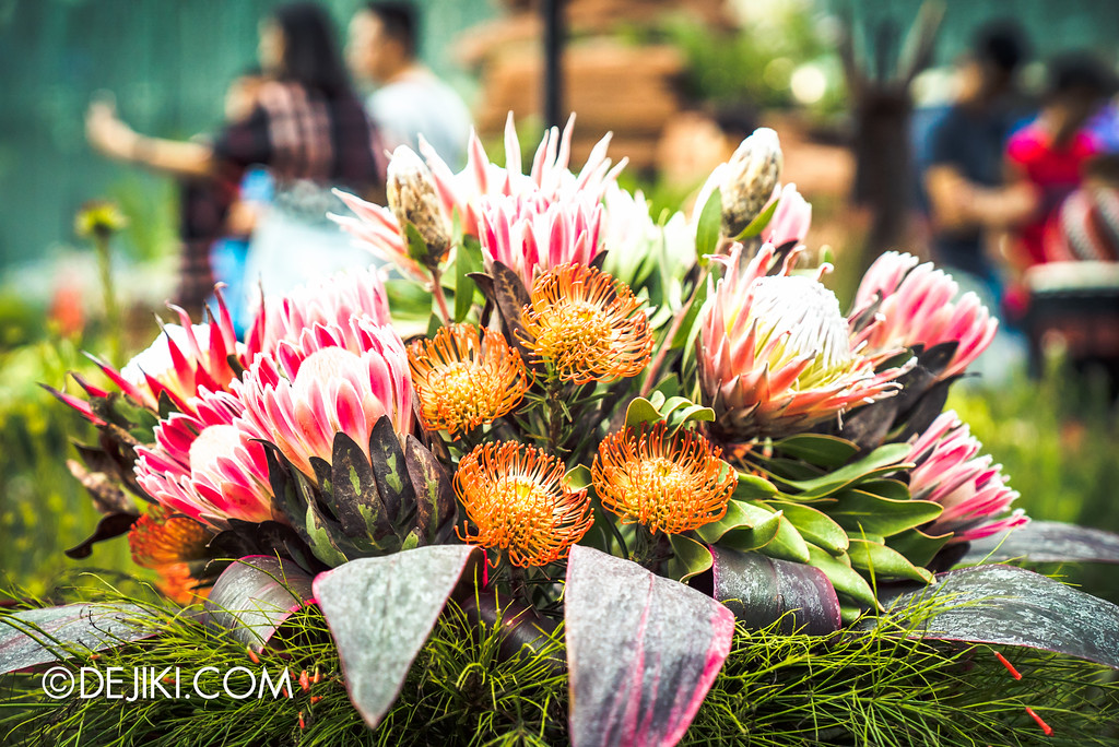 Gardens by the Bay - Tribal Tempo / Protea Cluster