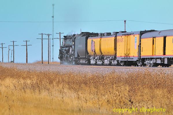 3985 Steam 4-6-6-4