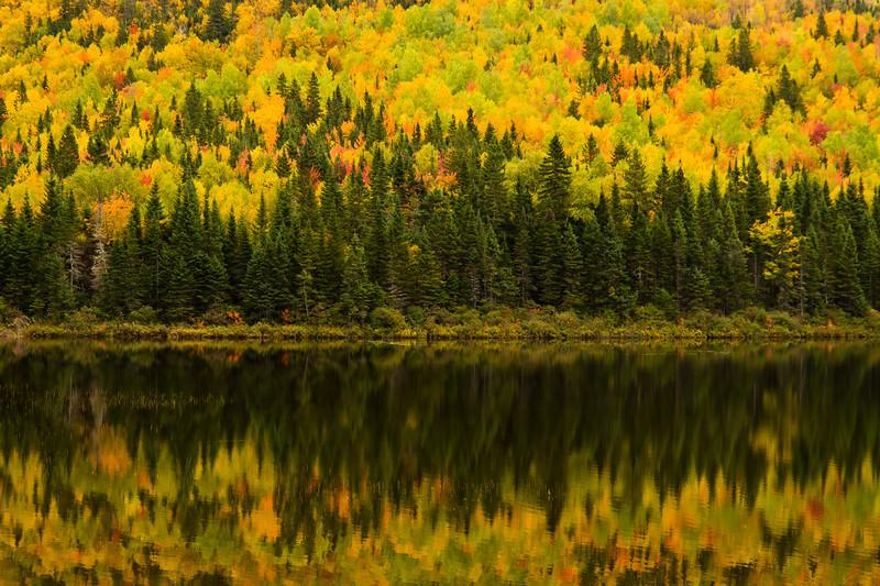 Réflexion des couleurs d'automne