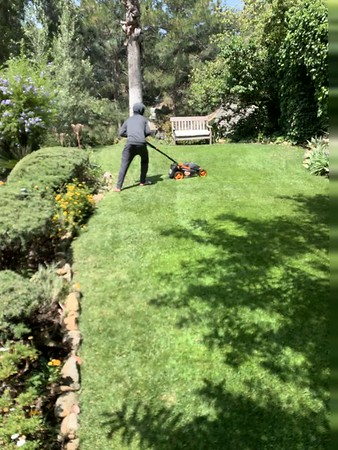 2019.07.06 Zachary mowing lawn