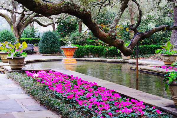 Bellingrath Gardens - Home and Nearby Gardens