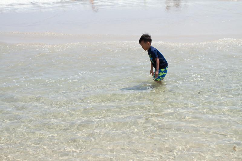 Island Beach-20.jpg