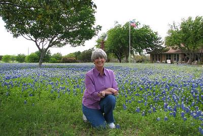 Luling car show a Texas blue bonnets