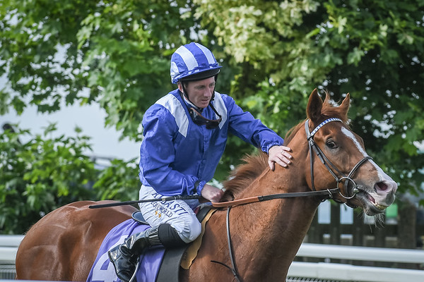 The Racing UK Profits All Returned To Racing Median Auction Maiden Stakes
