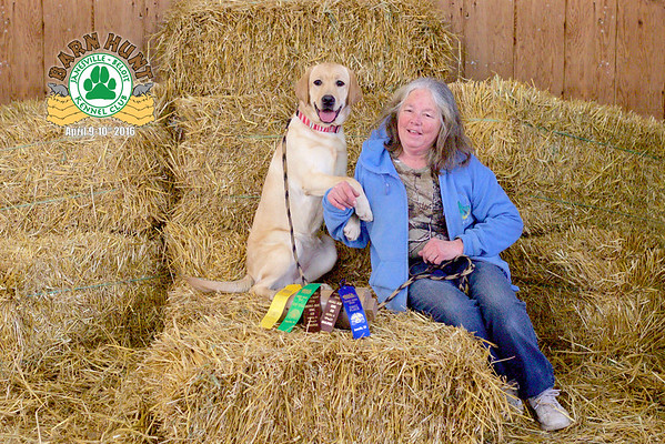 Janesville-Beloit Kennel Club