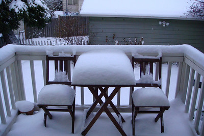 Snow December 18 2008