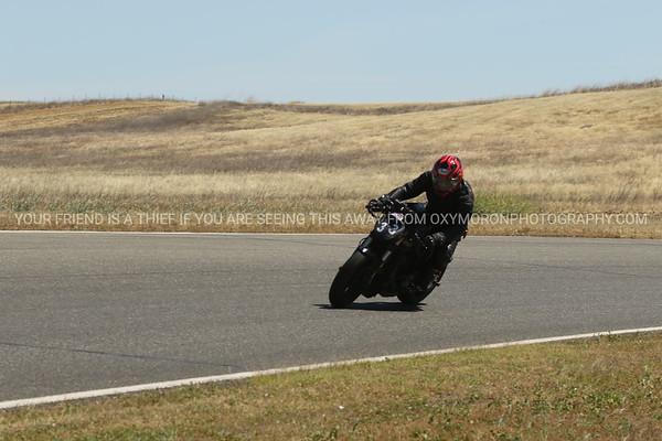 33 Ducati