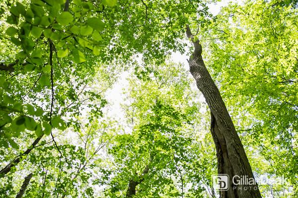 Nature-May2015-1066.jpg