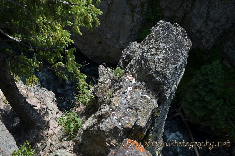 20100712_Yellowstone_3009.jpg
