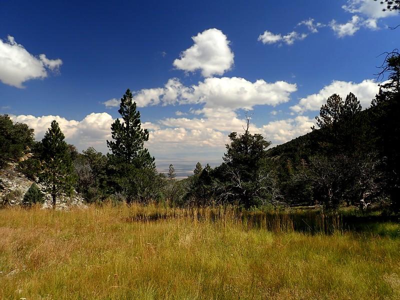 Great Basin National Park Nevada