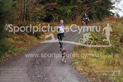 5kM Betws y Coed Trail Challenge at 2kM