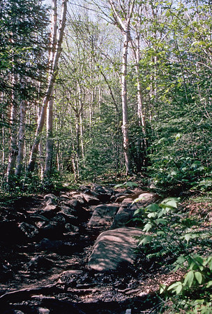 Adirondacks - 1998
