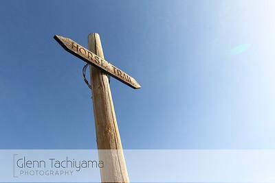 Yakima Skyline Rim 50K 2013