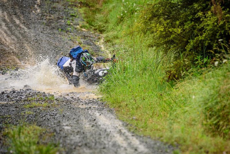 2018 KTM New Zealand Adventure Rallye - Northland (375).jpg