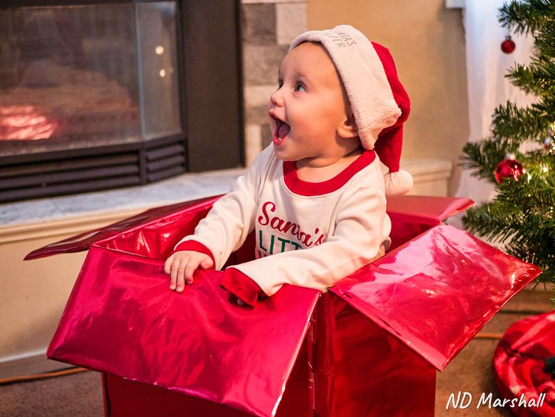 Christmas Baby.jpg
