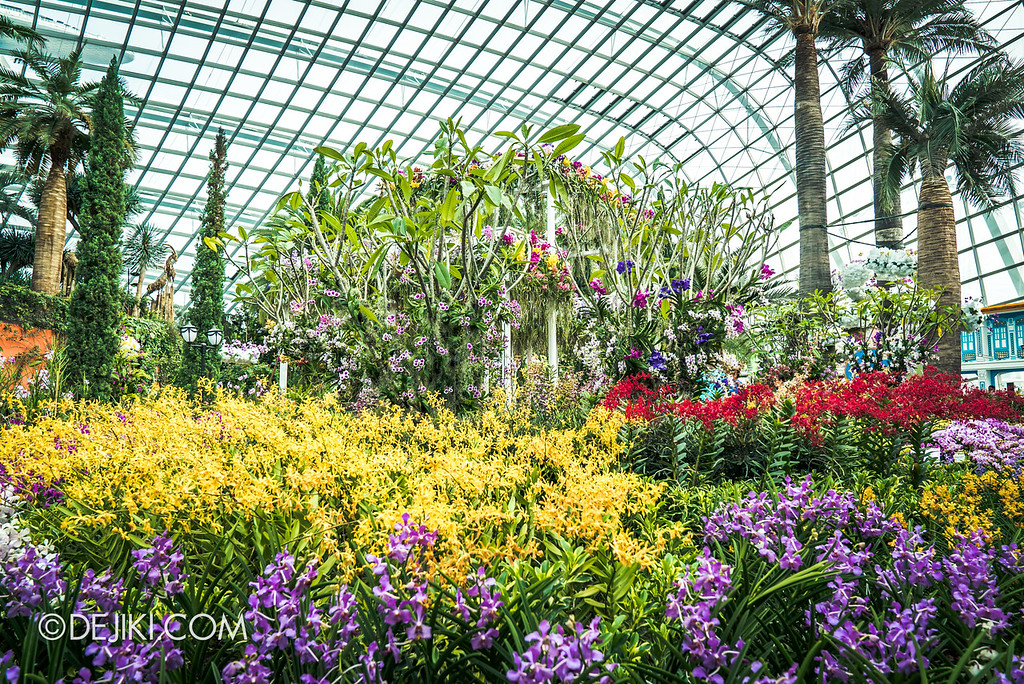Gardens by the Bay - Orchid Extravaganza 2018 / Main Flower Field