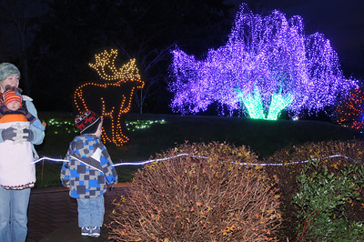 Pt. Defiance Zoo Lights 2012