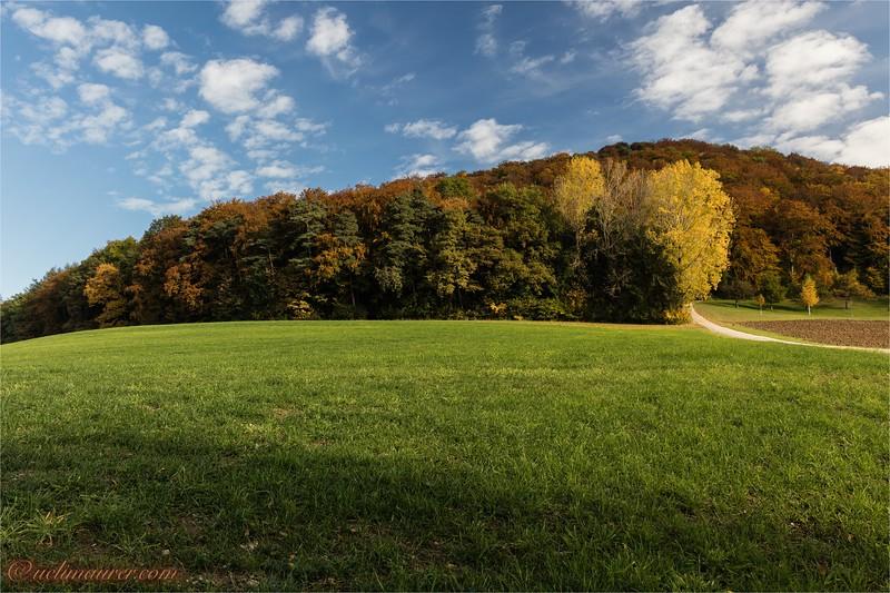 2016-10-22 Herbststimmung Aargau 0U5A1163.jpg