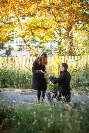 Gregg beautiful Surprise proposal, Battery Park, New York.