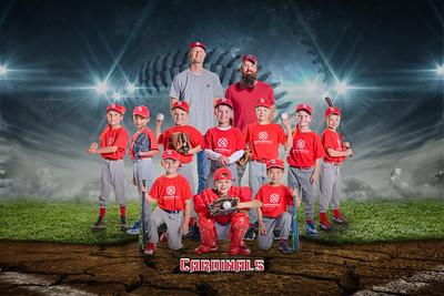 2019 Fall Baseball- 7U