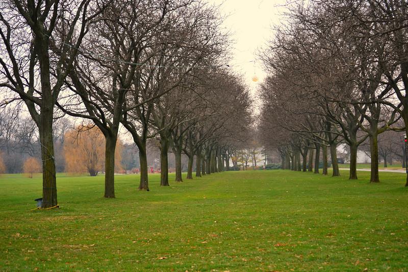 Cantigny Park Dec 2012