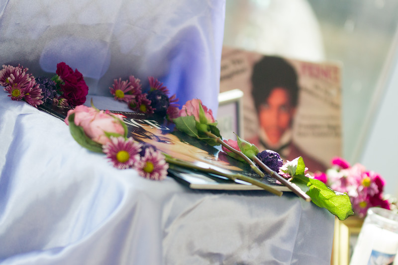 DSP dia de los muertos2017-05776.jpg