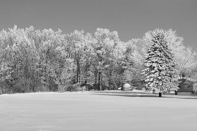 (12) - Black & White Winter Images