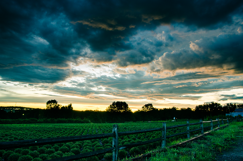 Wilson Farm, Litchfield, NH