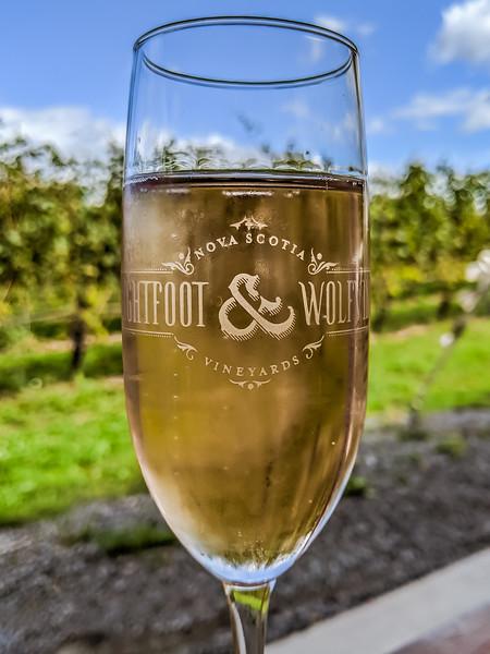 lightfoot and wolfville rose vineyard.jpg
