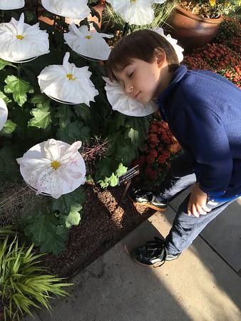 NY Botanical Garden Oct 12 2016
