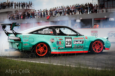 Turkey Circuit Championship Shows
