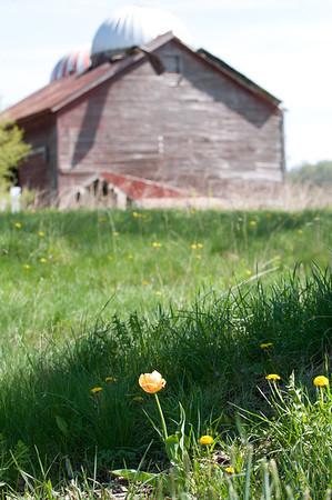 Gunhouse Farm