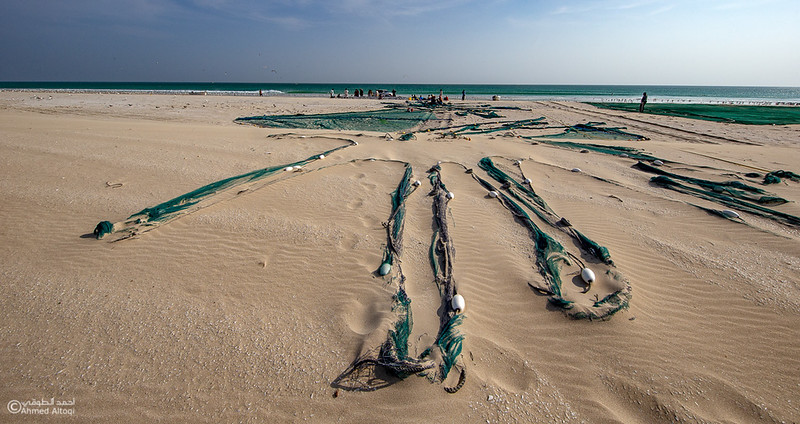 Sardine Season (89)- Dhofar.jpg