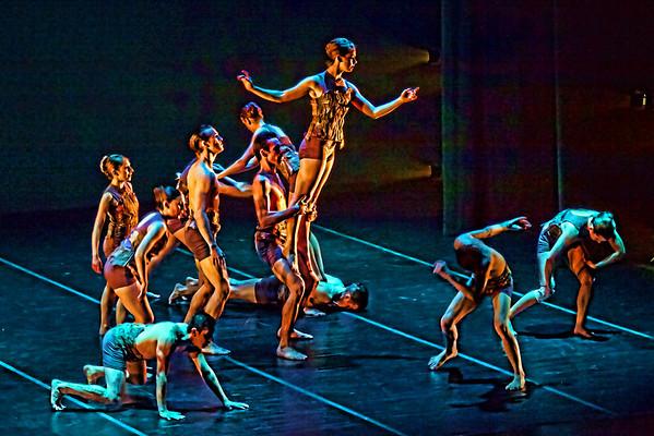 Dance Festivals and Conferences