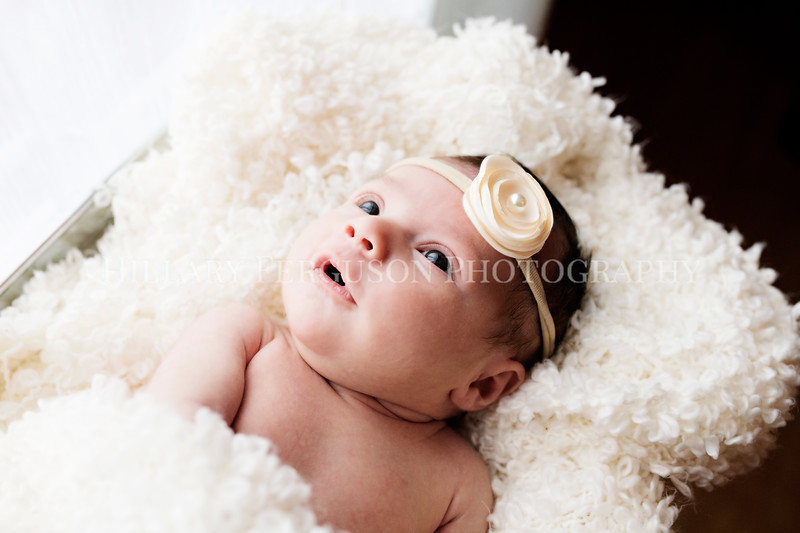 Hillary_Ferguson_Photography_Carlynn_Newborn180.jpg
