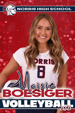 Volleyball Senior Banners