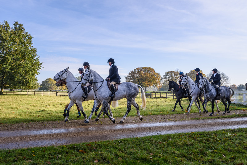 Fitzwilliam Opening meet Nov 2019-20-16.jpg