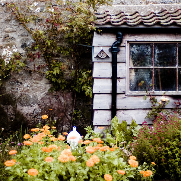 Lindisfarne, the castle garden, designed by Gertrude Jeckyll, early 20th century, Northumberland UK (restored after the discovery of Jeckyll's original plans in Berkeley California)