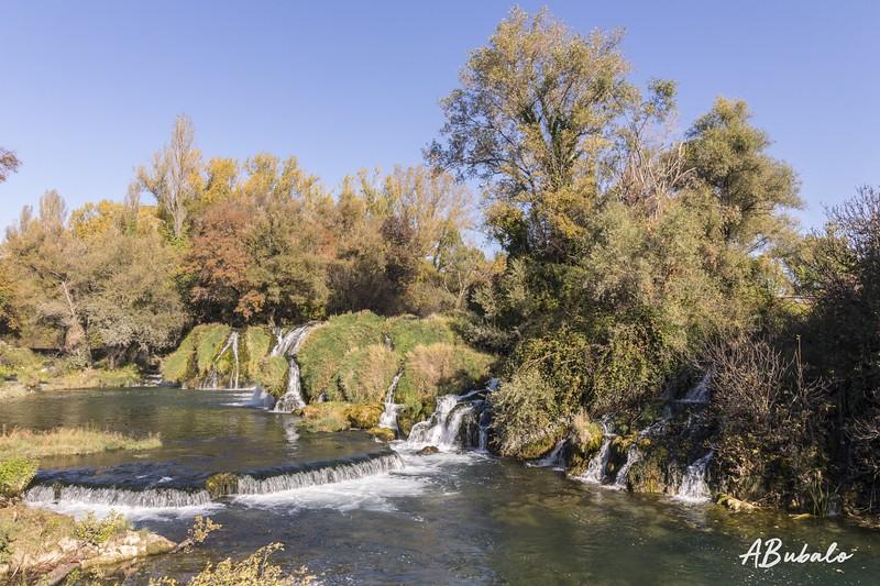 kocusa-jesen 3 lr (1 of 1).jpg