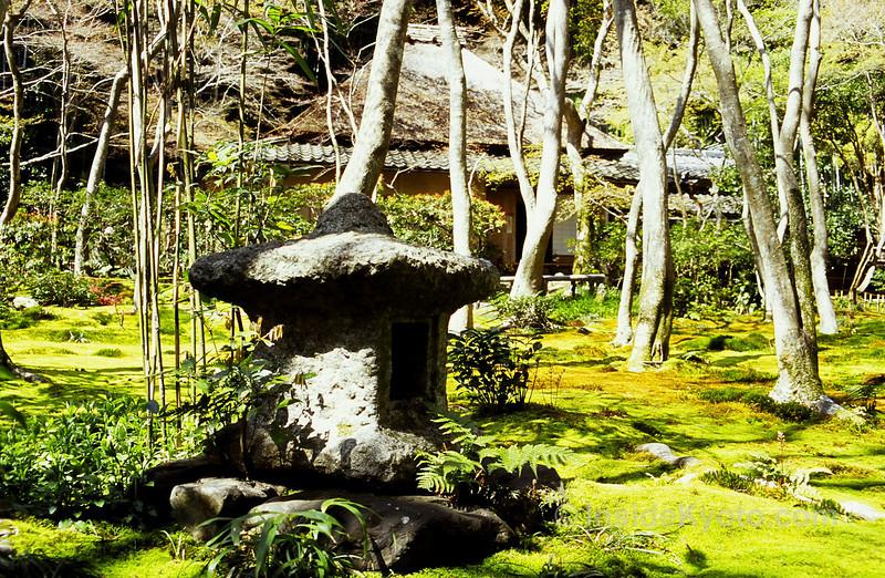 Gio-ji Temple, Kyoto