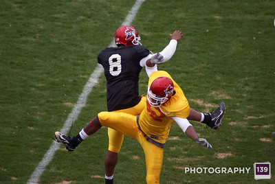 Iowa State Cyclones Football - 2008