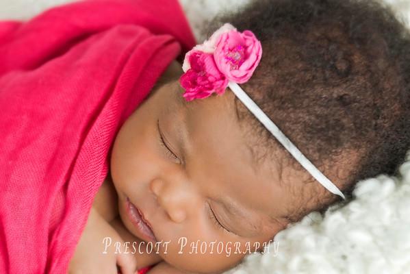 Hannah Magnolia Newborn
